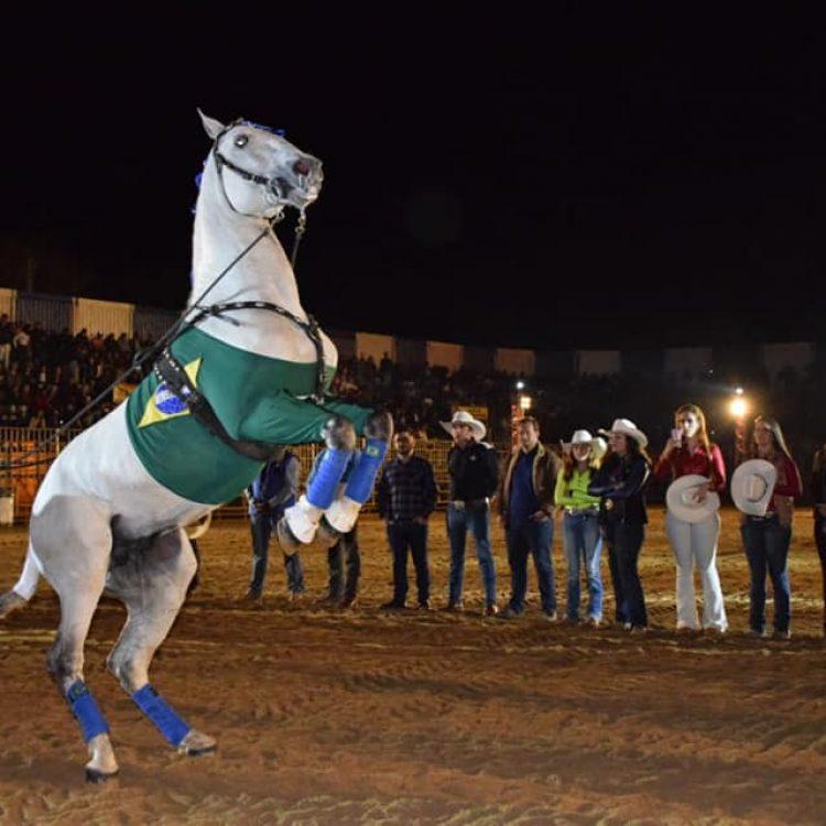 Festa do Cavalo (6)